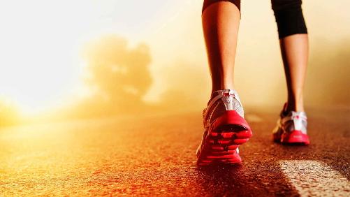 Erstelle Unterrichtsmaterialien für Fitness